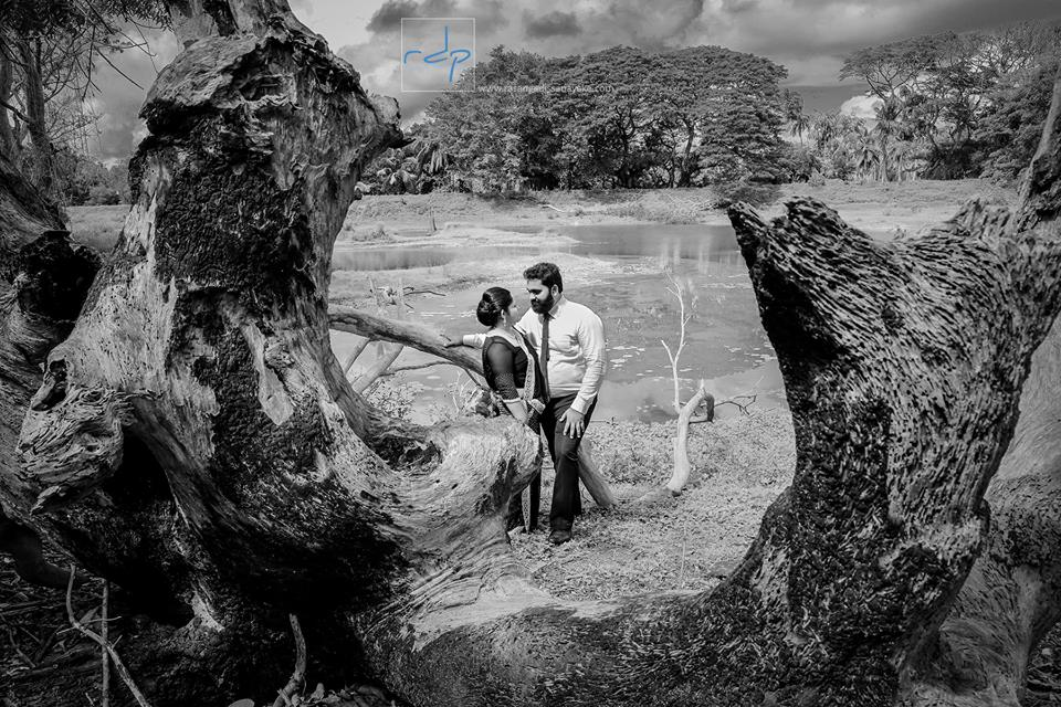 Rasanga Dissanayake Photography